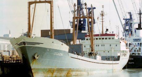 Cargoul SCAENI (1)